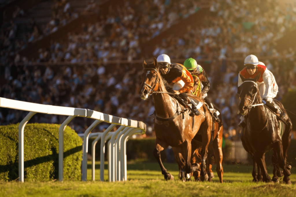 Buy or Sell a Racehorse, Luxury Assets - Saracens Solicitors